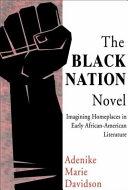The Black Nation Novel
