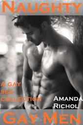 Naughty Gay Men (Gay Virgin Sex Stories Collection -- Bisexual, Menage, Light BDSM and College Gays): Gay Bundle