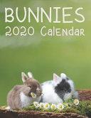 Bunnies 2020 Calendar