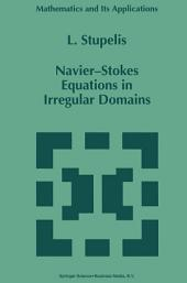 Navier-Stokes Equations in Irregular Domains