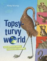 Topsy turvy World PDF