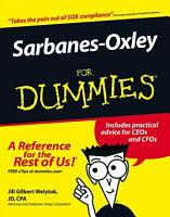 Sarbanes Oxley For Dummies PDF