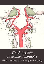 The American Anatomical Memoirs: Issue 4