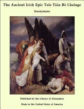 The Ancient Irish Epic Tale Tàin BÑ CÏalnge