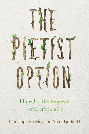 The Pietist Option PDF