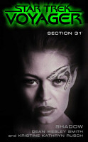 Section 31  Shadow PDF