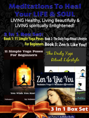 Meditations To Heal Your LIFE   SOUL  LIVING Healthy  Living Beautifully   LIVING Spiritually Enlightened    3 In 1 Box Set
