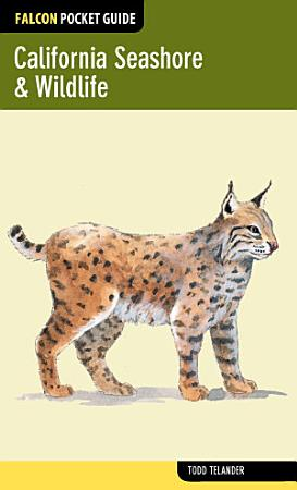 California Seashore   Wildlife PDF