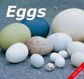 Eggs: Little Kiss26