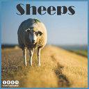 Sheeps 2021 Wall Calendar