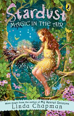 Stardust  Magic in the Air PDF