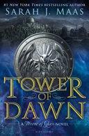Tower of Dawn PDF