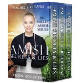 Amish Secrets and Lies 3-Book Collection: Big Valley Amish Series