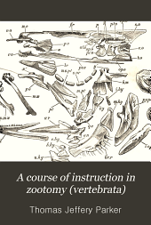 A Course of Instruction in Zootomy: (Vertebrata.)