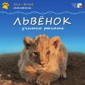Львенок учится рычать: [для детей