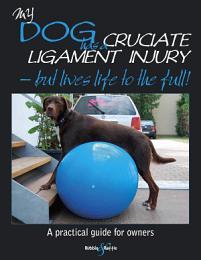 My Dog Has A Cruciate Ligament Injury