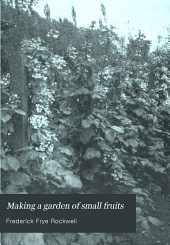 Making a Garden of Small Fruits