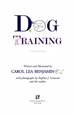 Dog Training in 10 Minutes