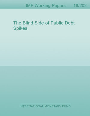 The Blind Side of Public Debt Spikes