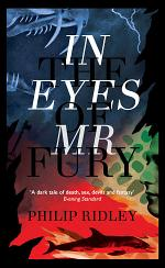 In the Eyes of Mr Fury