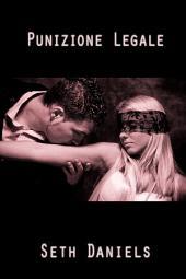 Punizione Legale: Una fantasia sulla schiavitù BDSM