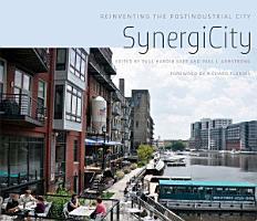 SynergiCity PDF