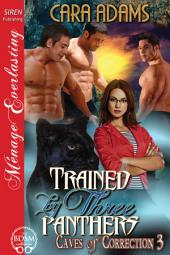 Trained by Three Panthers [Caves of Correction 3]