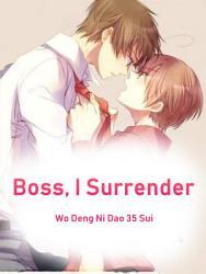Boss  I Surrender PDF