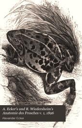 A. Ecker's und R. Wiedersheim's Anatomie des Frosches: Band 1