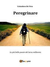 Peregrinare - Le più belle poesie del terzo millennio