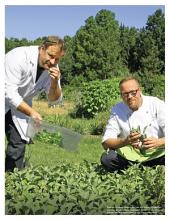 Einmalig in Bayern - Kräuter frisch auf den Tisch: ECHT Oberfranken - Ausgabe 48