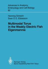 Multimodal Torus in the Weakly Electric Fish Eigenmannia