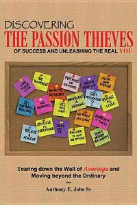 Discovering the Passion Thieves of Success and Unleashing the Real You PDF