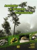 Amphibien   Reptilien S  dostasiens PDF