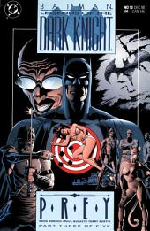 Legends of the Dark Knight #13