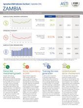 Zambia: Agricultural R&D indicators factsheet