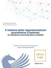 Il sistema delle rappresentazioni quantitative d'azienda: le rilevazioni amministrativo-contabili