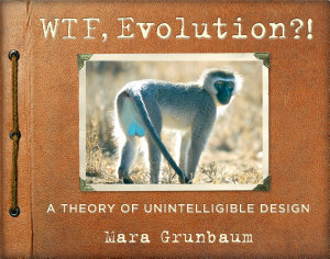 WTF  Evolution