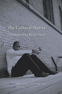 The Cultural Matrix PDF