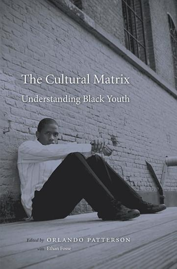 The Cultural Matrix PDF