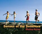 Senses at the Seashore
