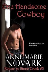 One Handsome Cowboy