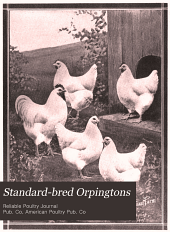 Standard-bred Orpingtons, Black, Buff and White, Their Practical Qualities: The Standard Requirements; how to Judge Them; how to Mate and Breed for Best Results, with a Chapter on New Non-standard Varieties