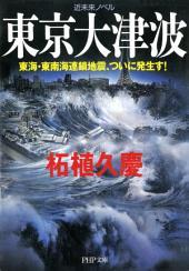 近未来ノベル 東京大津波: 東海・東南海連鎖地震、ついに発生す!