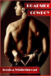 Roadside Cowboy (Western, Cowboy, Erotica)