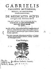 De medicatis aquis atque de fossilibus Tractatus