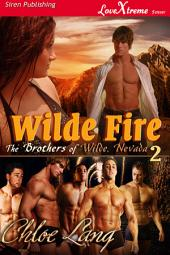 Wilde Fire [The Brothers of Wilde, Nevada 2]
