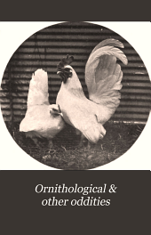 Ornithological & Other Oddities