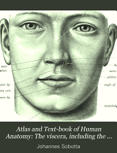 Atlas and Text-book of Human Anatomy: Volume 2