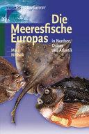 Die Meeresfische Europas in Nordsee  Ostsee und Atlantik PDF